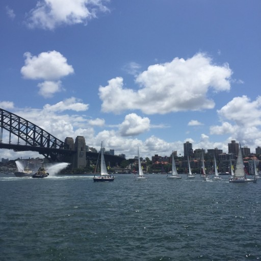 Yachts on Syd Harbour